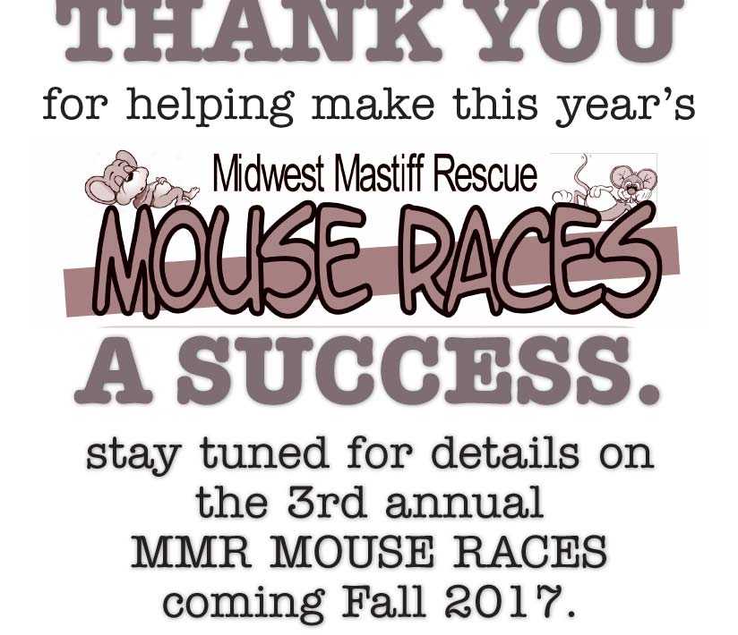 Mouse Race Poster
